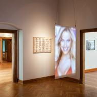 Petra Warrass, Täuschung und Wahrheit, Ausstellung Schloss Agathenburg, 2015